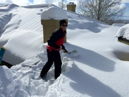 Case Mix - shoveling the roof.