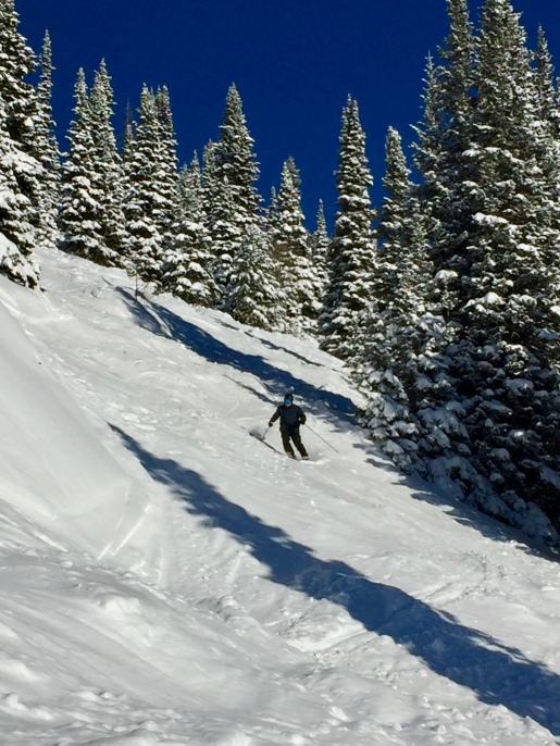 Bob, North Hobacks coming out of the trees, Jackson Hole WY